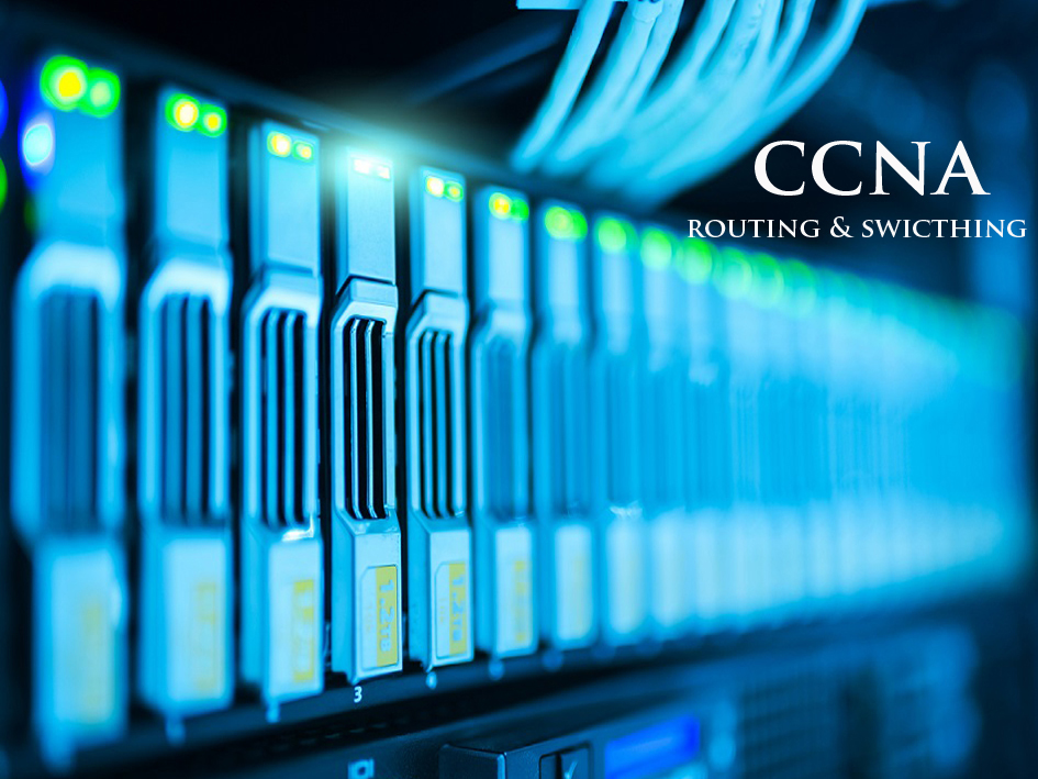 Certificate Course in Skill Development Programme on CCNA